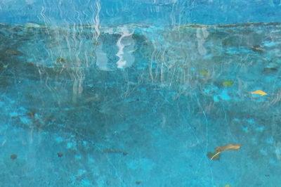bagsu-pool